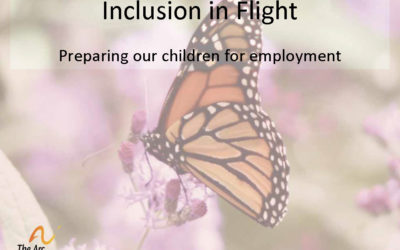 2016 Presentation- Inclusion in Flight